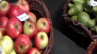 Owoce i Warzywa: Śliwy, jabłka, grusze, orzechy laskowe, włoskie