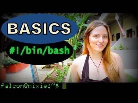 Intro to the Command Line - BASH Basics