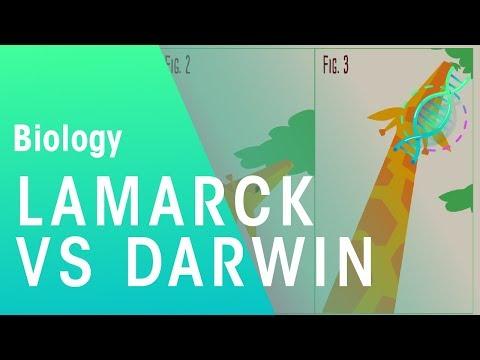 Theories of evolution Lamarck vs Darwin | Evolution | Biology | FuseSchool