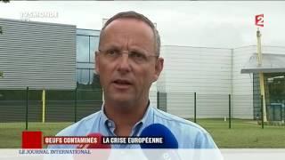 Oeufs contaminés : la crise européenne