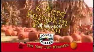 Apple Picking & Pumpkin Picking at Apple Holler