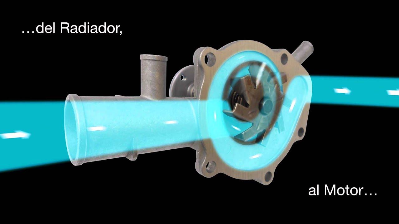 Funcin de la Bomba de Agua Automotriz Diagrama 3D  YouTube