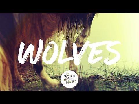Selena Gomez x Marshmello - Wolves...