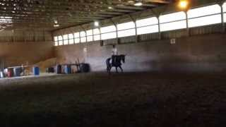 Mya Riding to Music - Trot, Walk, and Canter