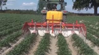 Pielnik herbicydowy tył 40 ha pietruszki