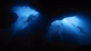 С точки зрения науки: Морская бездна. National geographic. Документальный фильм