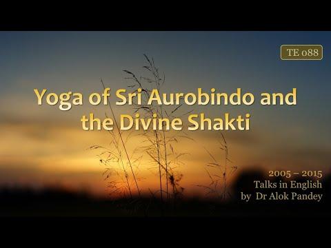 """Yoga of Sri Aurobindo and the Divine Shakti"" - a talk by Dr Alok Pandey"