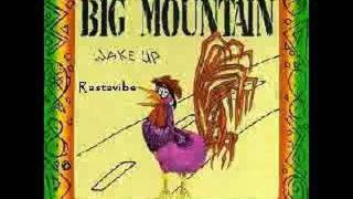 Big Mountain Rastaman