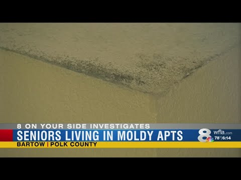 Mychal Maguire - Bartow Seniors Fear Mold In Subsidized Apartments Is Killing Them