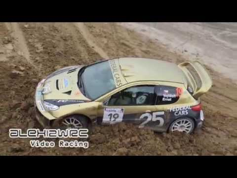 PURE ENGINE SOUND | Rally Legend San Marino 2015 [HD]