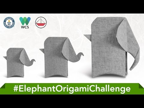Origami Elephant (Rui Roda)