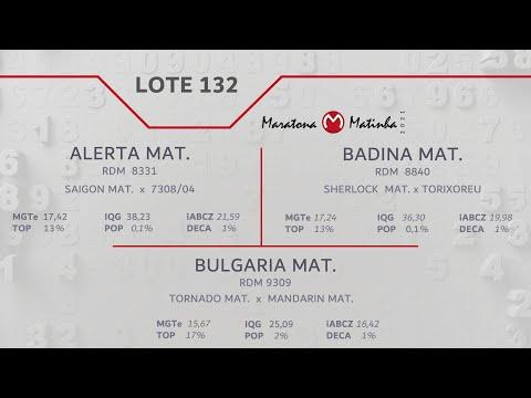 LOTE 132 Maratona Matinha