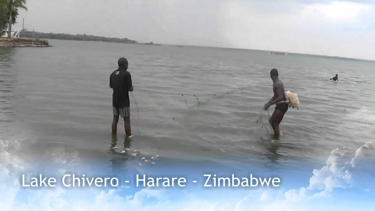 lake chivero zimbabwe Lake chivero is a reservoir on the manyame riverit was formerly called lake mcilwaine in memory of sir robert mcllwaine, a former judge of the high court and founder of zimbabwe's soil and water conservation movement.