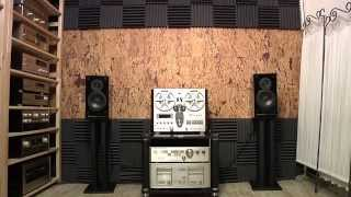 Vintage Audio Collection Oldplayer