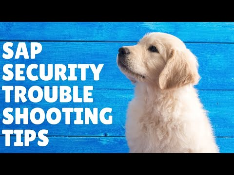 SAP Training What the some trouble shooting tips  for SAP Security Admin