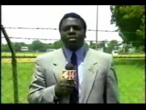 reporter gets crazy from bee on live TV
