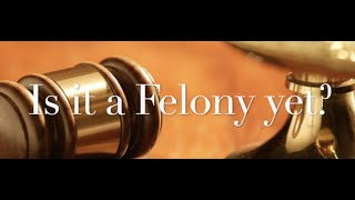 The Behan Law Group, P.L.L.C. Video - Is it a Felony yet?