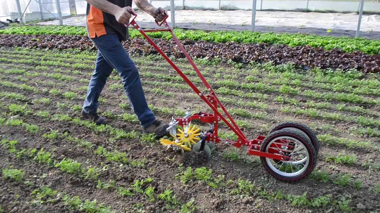 Terrateck Double Wheel Hoe Cultivator With Finger Weeder Youtube