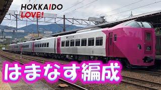 【ピンクちゃん】キハ261系はまなす編成が小樽駅に参上! HOKKAIDO LOVE!