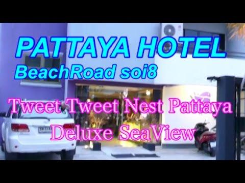 【Pattaya Hotel 2015】Tweet Tweet Nest Pattaya Hotel ツイート ツイート ネスト パタヤ ホテル  芭提雅