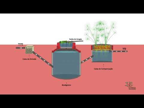 Como construir um biodigestor