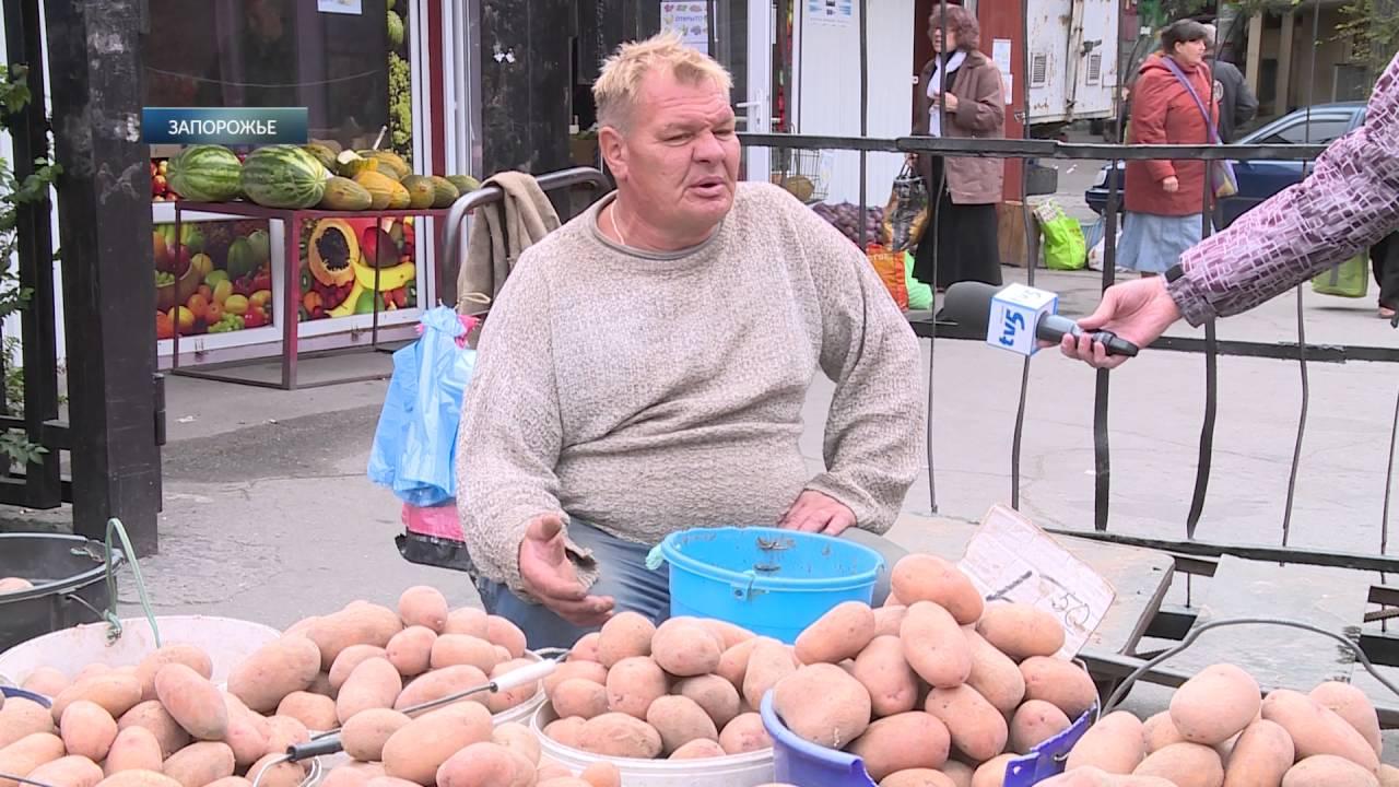 На Одесской таможне открывают «зелёный коридор» для грецких орехов .