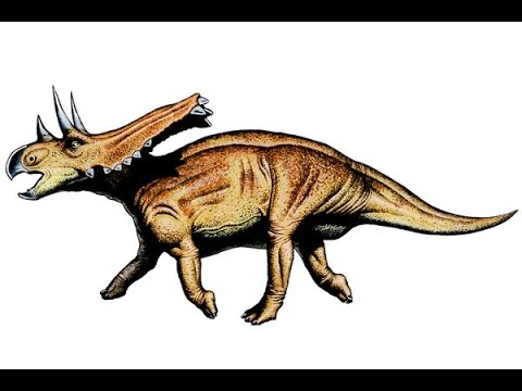 Chasmosaurus | Enciclopedia sobre Dinosaurios