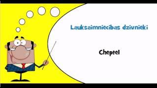 J'apprends le letton #Thème = Bétail, cheptel et petits animaux