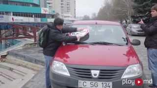 Стопхам Молдова - Гайдук