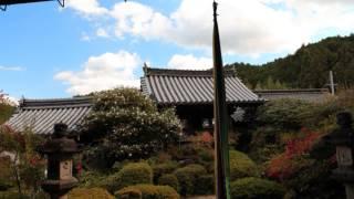 聖林寺2013・11・18ぶらぶら!