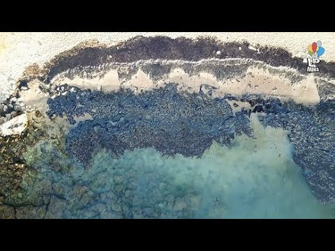 The environmental disaster from the oil accident in Salamis Greece from above. Drone footage.