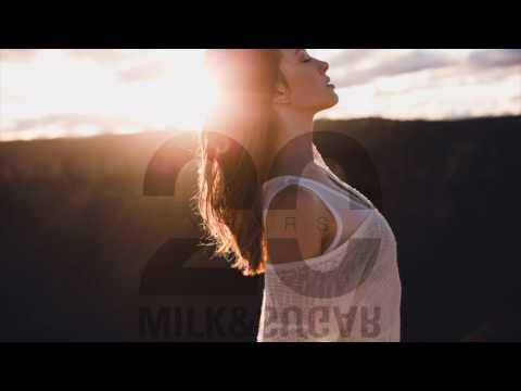 Disco Dice - Starlight [Milk & Sugar Recordings]