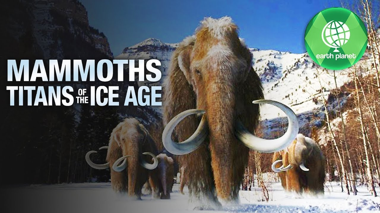 Download The Mammoth - Titan of the Ice Age | Part 1 | Ice Age stories