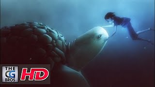 cgi award winning animated short film hd caldera by evan viera
