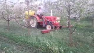 herbicydy w sadzie czereśniowym 2016 (królik, Władimirec t-25)