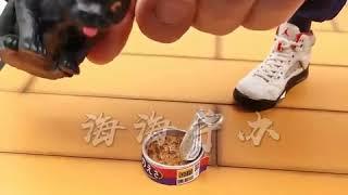 슬램덩크 서태웅 운동복 패션 자전거 세트 28cm