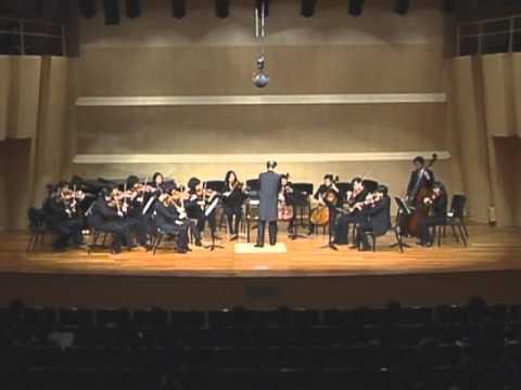 G.Bizet - Carmen Suite for String Orchestra 1. Toreador 2. Prelude 3. Aragonaise