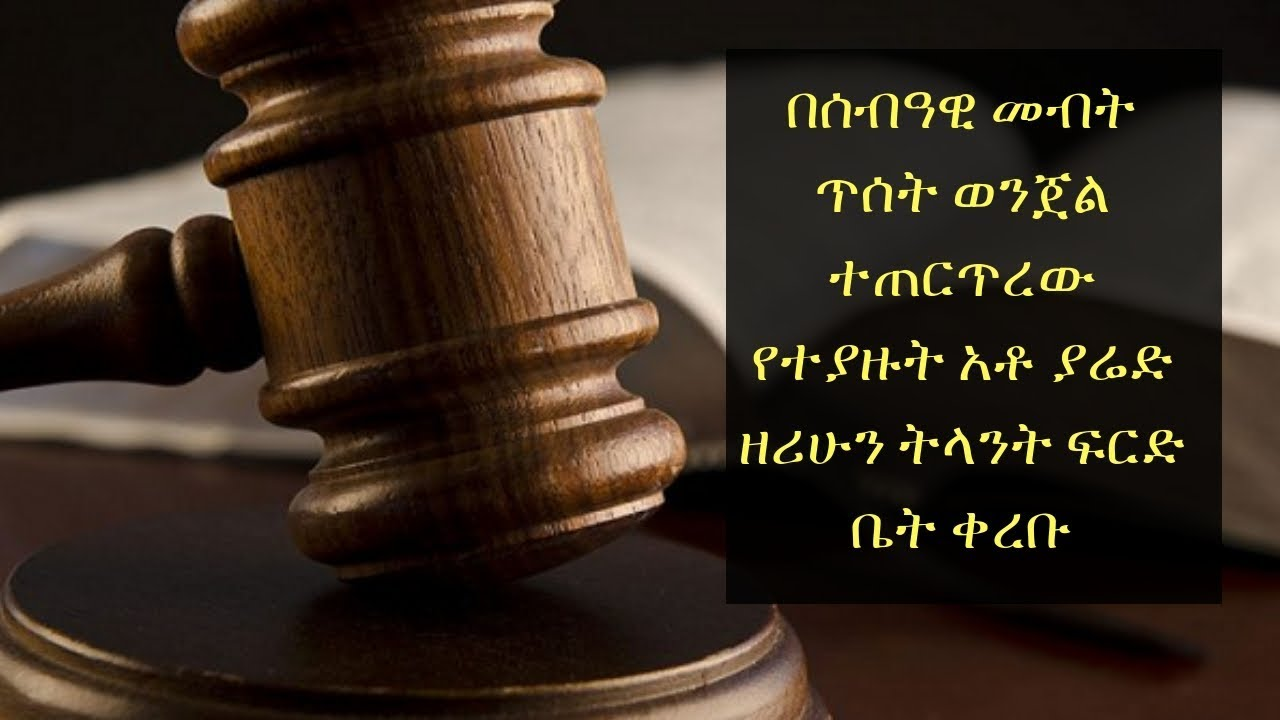 Yared Zirhun court process  against human right