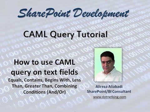 How to use CAML query on SharePoint text fields (Equals, Contains, Begins With)