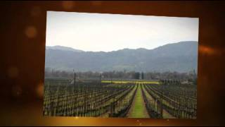 Winery Tour in Napa Valley & Sonoma - Limousine Service