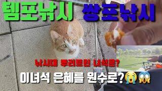 템포낚시/쌍포낚시/아쿠아3합/외통채비