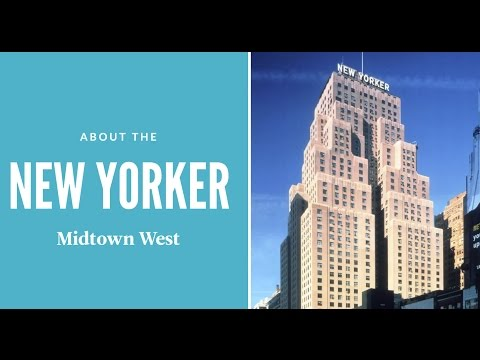 4 Things to Know About New Yorker | New York City Student Housing