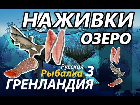 рыбалка 3 озеро елец