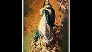 Daily Daily SIng to Mary Video_0001.WMV