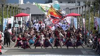 【中央】常磐 2019泉州YOSAKOIゑぇじゃないか祭り10/20(日) 海への道会場