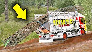 Truk Isuzu Skar Taro Mencoba Jalur Extrim Kalimantan  Angkut Bambu - ETS2