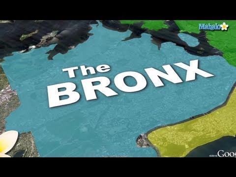 The Bronx - New York City, New York