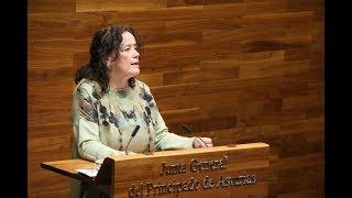 Dotar d servicios de transporte del Oriente hasta Gijón puede ser una importante medida demográfica
