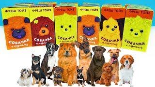 ЛЮБИТЕ ПЕСИКІВ? АВ-АВ! СОБАЧКИ Сюрпризи з іграшками від Fresh Toys Surprise unboxing НОВИНКА 2018