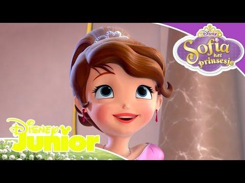 Sofia het Prinsesje | Seizoen 4 Liedjes 🎶| Disney Junior BE